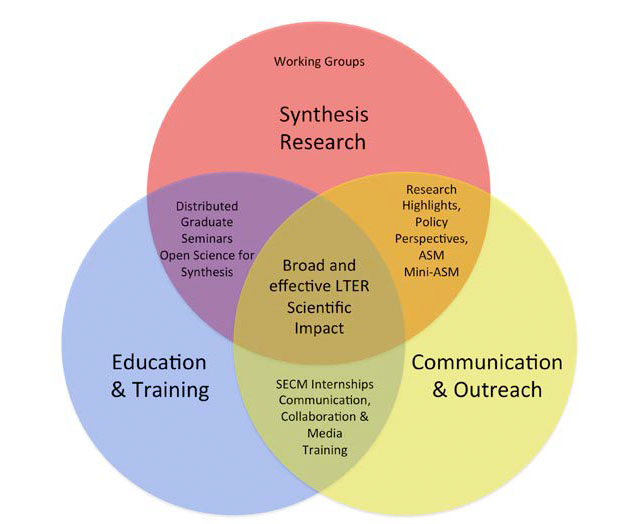 nco venn diagram of synthesis research, communication and outreach, education and training